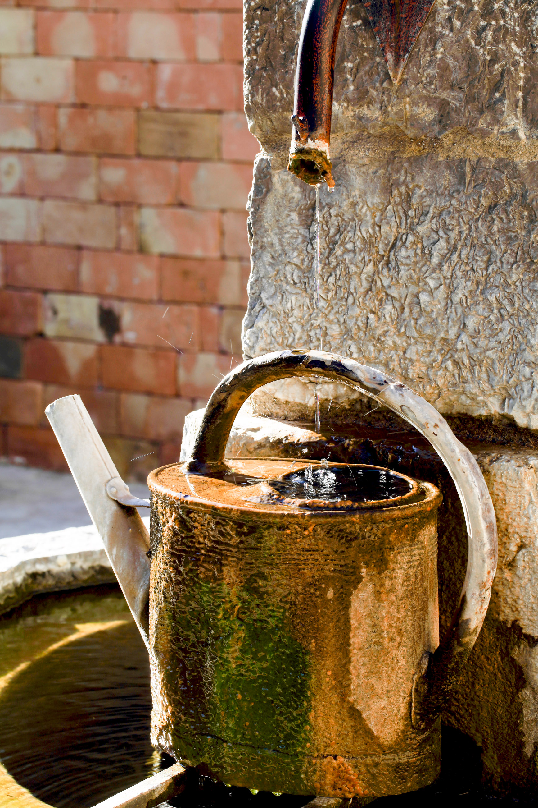 La fontaine de notre Domaine
