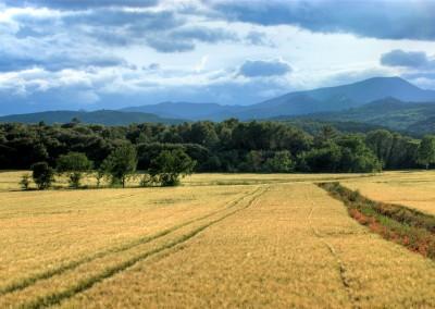 Near Anduze