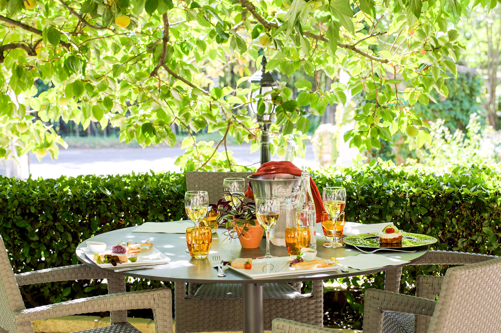Regional products and traditional cooking on our terrace